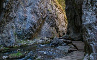 Kvačianska a Prosiecka Dolina – Túra (Okruh)