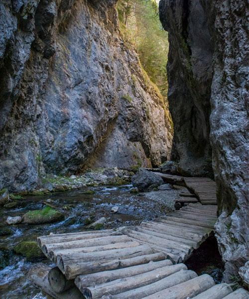 Prosiecka Dolina Chodník